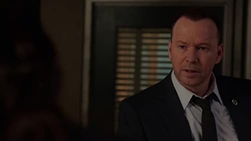 Blue Bloods: Divide And Conquer