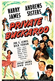 Private Buckaroo Poster