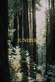 Primary photo for Juniper