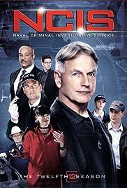NCIS: Season 12 - #1 Drama in the World Poster