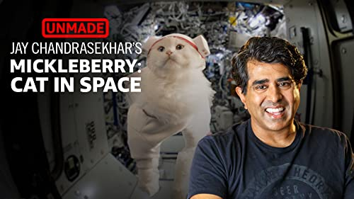 Jay Chandrasekhar's 'Mickleberry: Cat In Space'