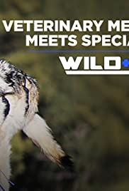 A New Population of Sonoran Pronghorn Poster