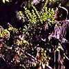 Michael Madsen in Species (1995)