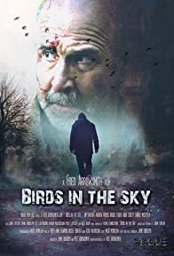 Primary photo for Birds in the Sky