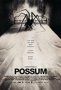 Primary photo for Possum