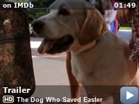 watch the dog who saved christmas 123movies