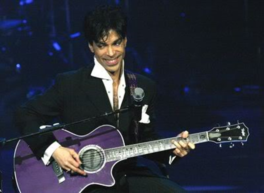 Prince: The Art of Musicology (2004)