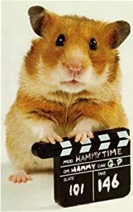 Ser på gratis engelsk filmer Once Upon a Hamster: Bubbles  [640x320] [640x320] [Mpeg]