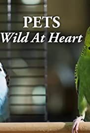 Pets: Wild at Heart Poster
