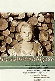 Novemberkatzen Poster