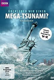 Could We Survive a Mega-Tsunami? Poster