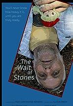 The Wait of Stones