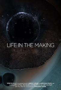 Watch hd divx movies Life in the Making [BRRip]