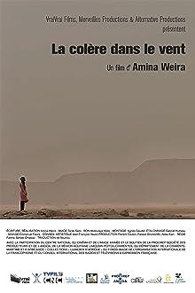 LA COLERE DANS LE VENT (2016)