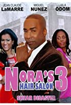 Nora's Hair Salon 3: Shear Disaster