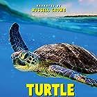 Turtle Odyssey (2018)