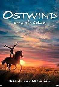 Primary photo for Ostwind - Der große Orkan