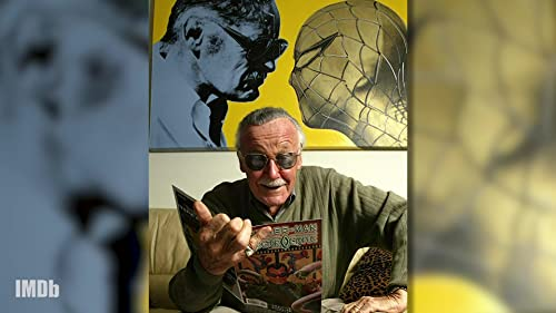 How Miles Morales and Stan Lee Give Power to the 'Spider-Verse'