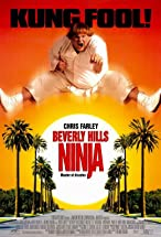 Primary image for Beverly Hills Ninja