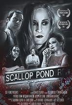 Scallop Pond