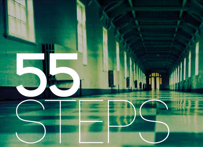 55 Steps (2017)