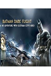 Primary photo for Batman: Dark Flight