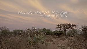 Driving Mexico's Economy