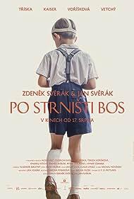 Po strnisti bos (2017) Poster - Movie Forum, Cast, Reviews