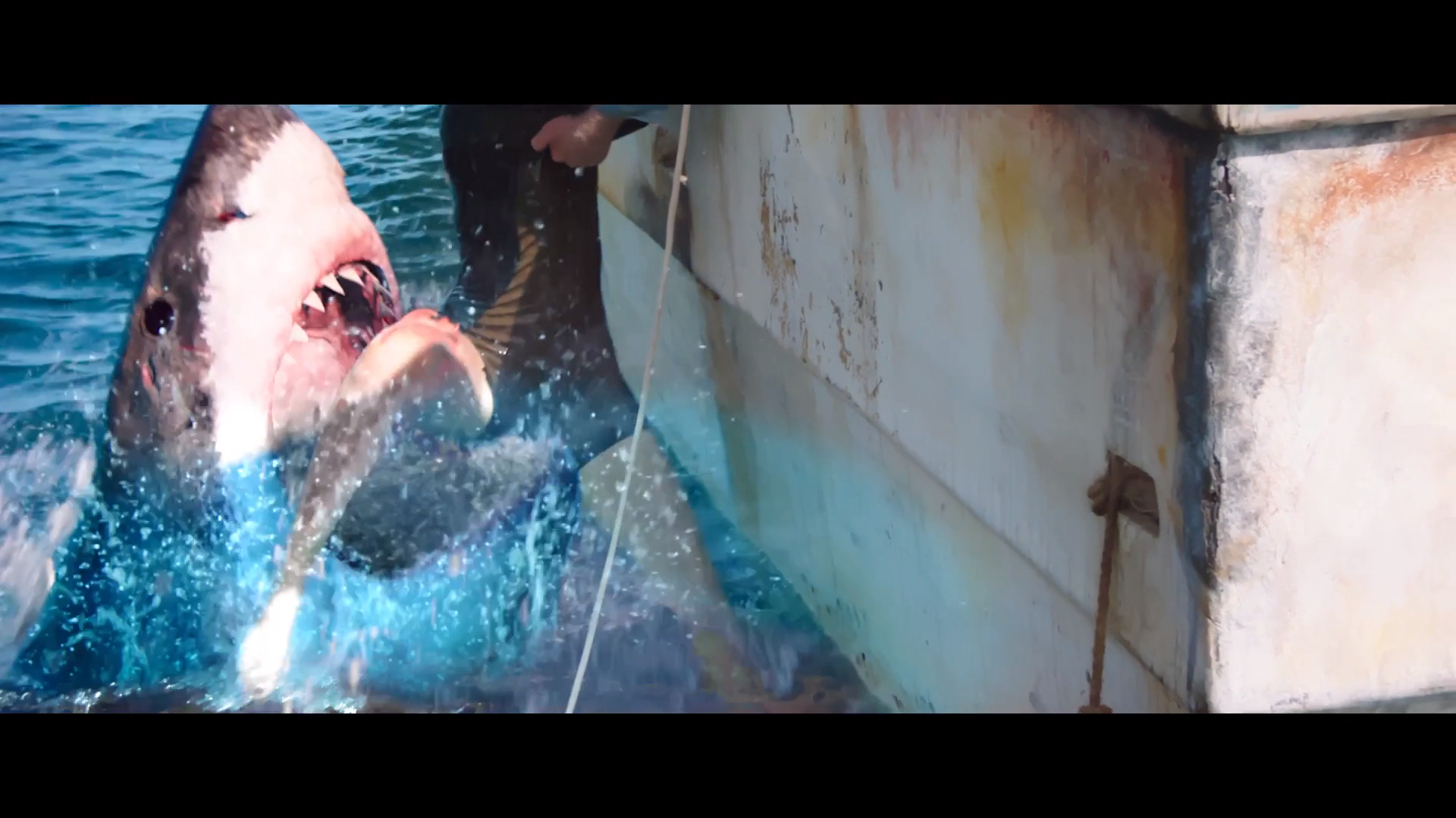 47 Meters Down Kinox Deutsch