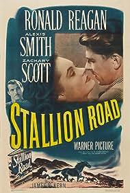 Ronald Reagan, Zachary Scott, and Alexis Smith in Stallion Road (1947)