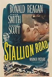 Stallion Road(1947) Poster - Movie Forum, Cast, Reviews
