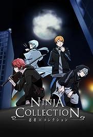 Ninja Collection Poster
