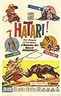 Hatari! (1962) Poster