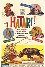 Primary image for Hatari!