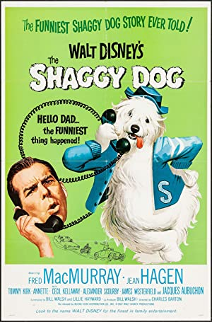The Shaggy Dog Poster Image