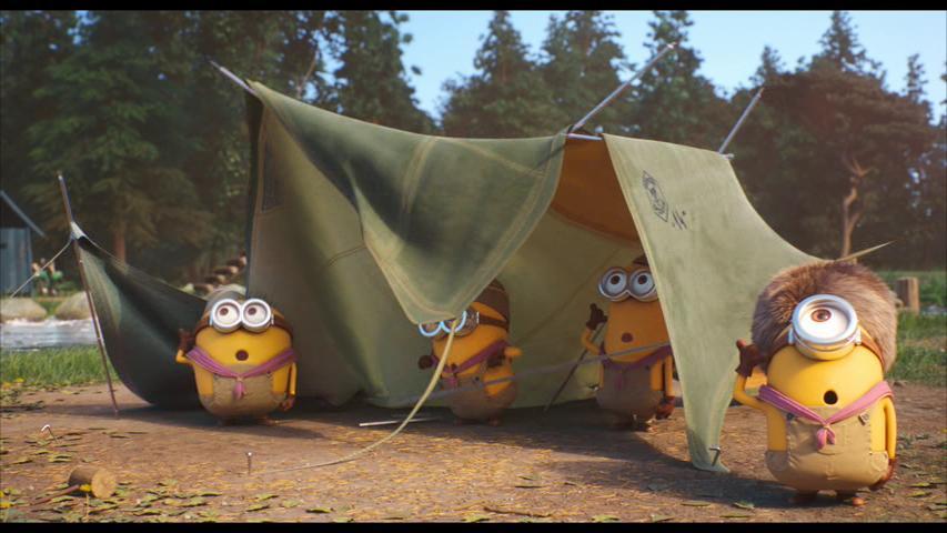 Minion Scouts (2019) Online Subtitrat in Romana in HD 1080p
