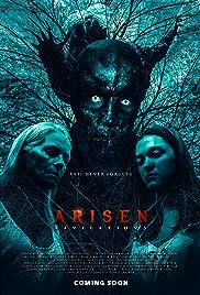 Arisen Revelations Poster