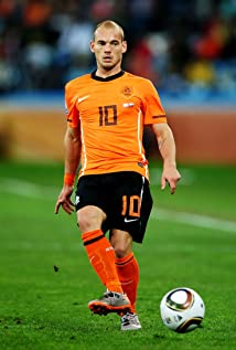 Wesley Sneijder Picture