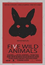 Five Wild Animals