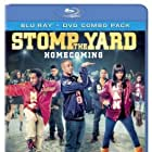 Stomp the Yard 2: Homecoming (2010)