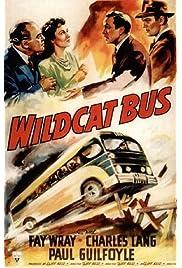 Wildcat Bus