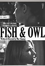 Fish and Owl