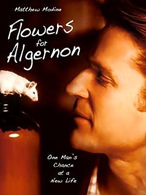 Where to stream Flowers for Algernon