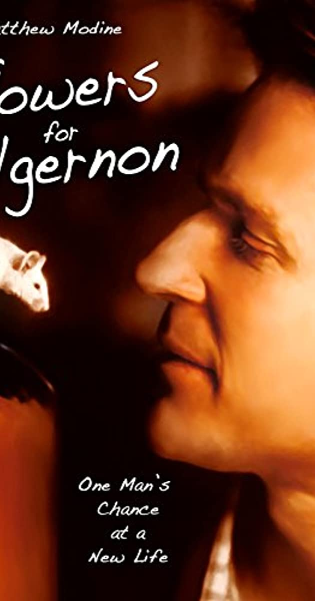 Flowers For Algernon Tv Movie 2000 Imdb