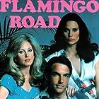 Morgan Fairchild, Mark Harmon, and Cristina Raines in Flamingo Road (1980)