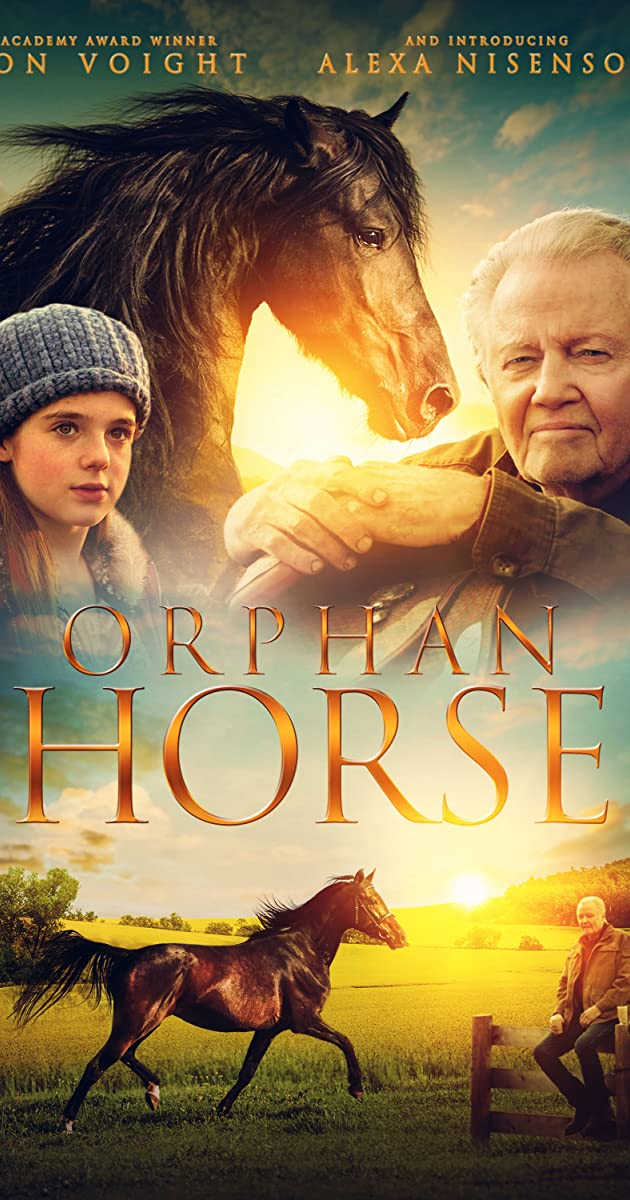 Subtitle of Orphan Horse