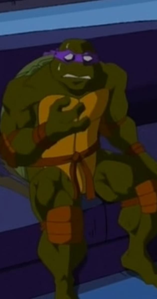 Teenage Mutant Ninja Turtles Adventures In Turtle Sitting Tv Episode 2006 Michael Sinterniklaas As Leonardo Imdb