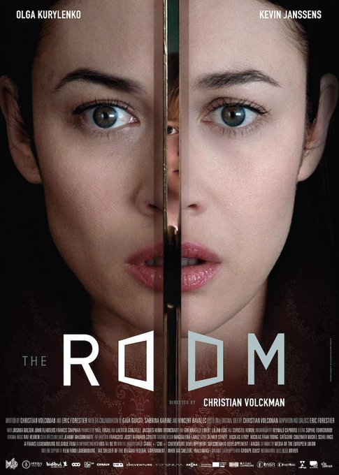 The Room 2019 Dual Audio Hindi ORG 350MB BluRay 480p ESubs Free Download