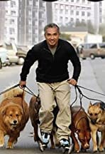 Untitled Cesar Millan Project