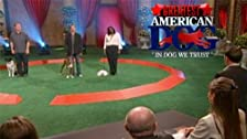 The Greatest American Dog Is...